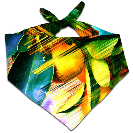 Adam Priester - Space Fruit Bandana