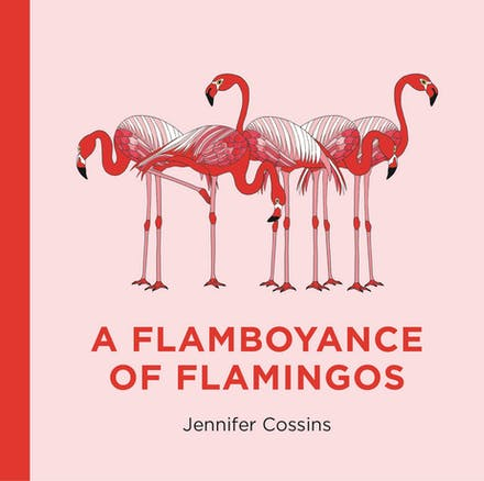 Gift book of animal collective nouns with pink flamingos