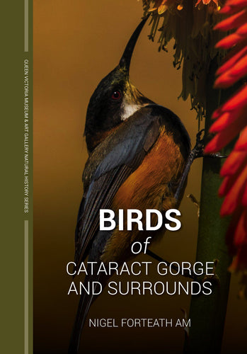 Book of birds from the Gorge, Launceston Tasmania Eastern Spinebill on cover.