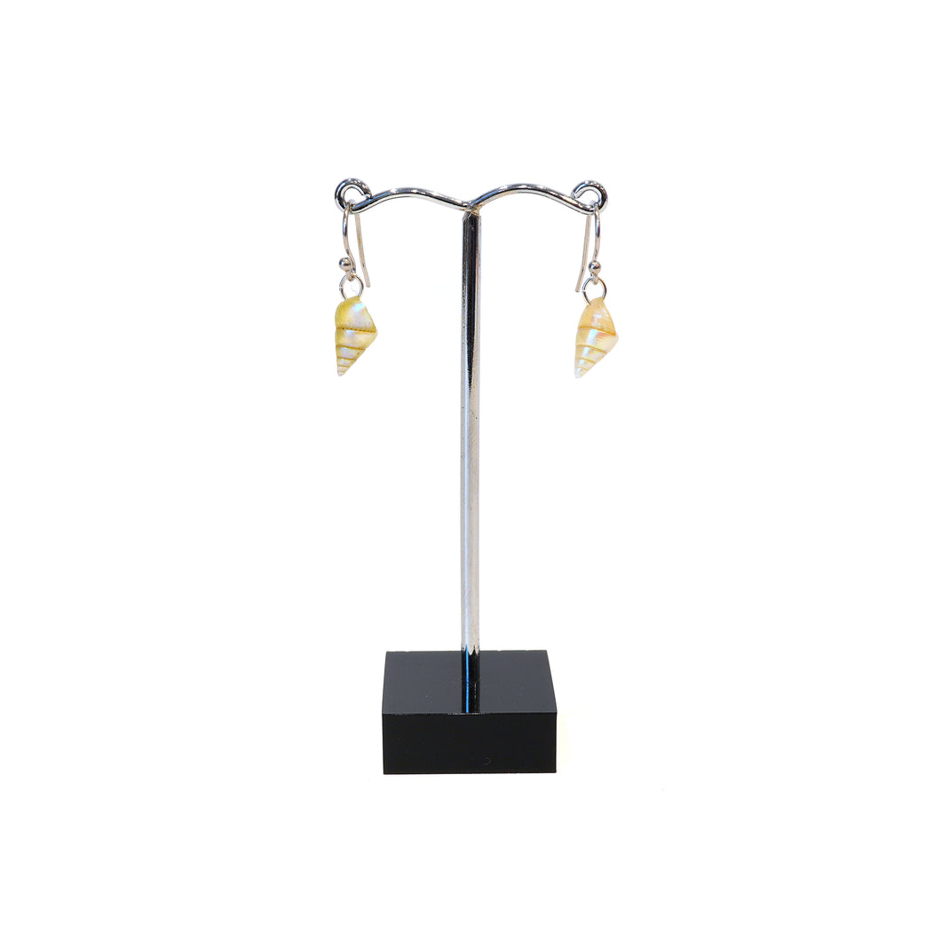 Single maireener shell silver hook earrings.