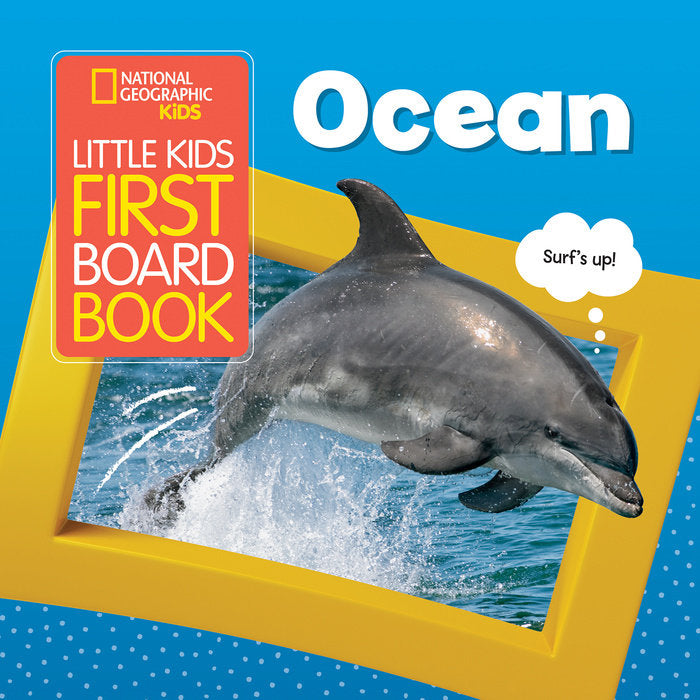 Board book with dolphin jumping out of the water on cover.