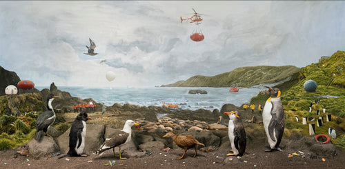 Reimagined diorama of Macquarie Island with birds.