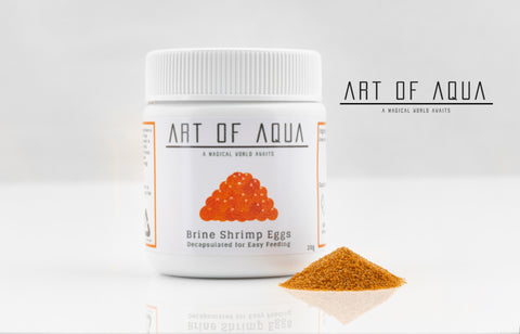 Art of Aqua - Decapsulated Brine Shrimp Eggs (20g)
