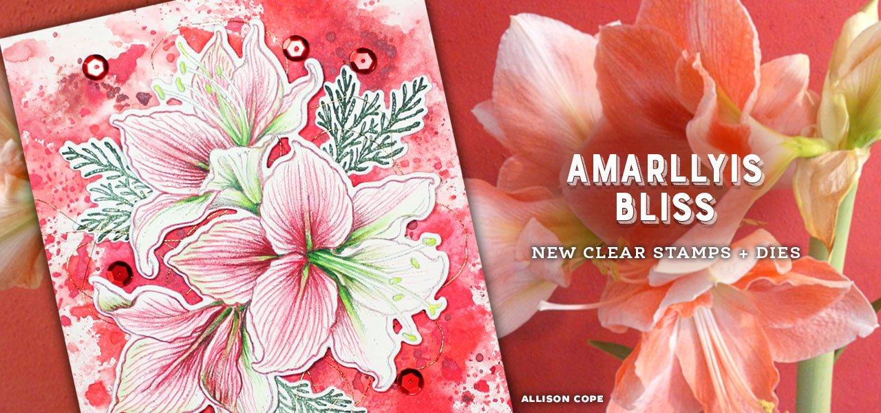 Amaryllis Bliss stamps and dies