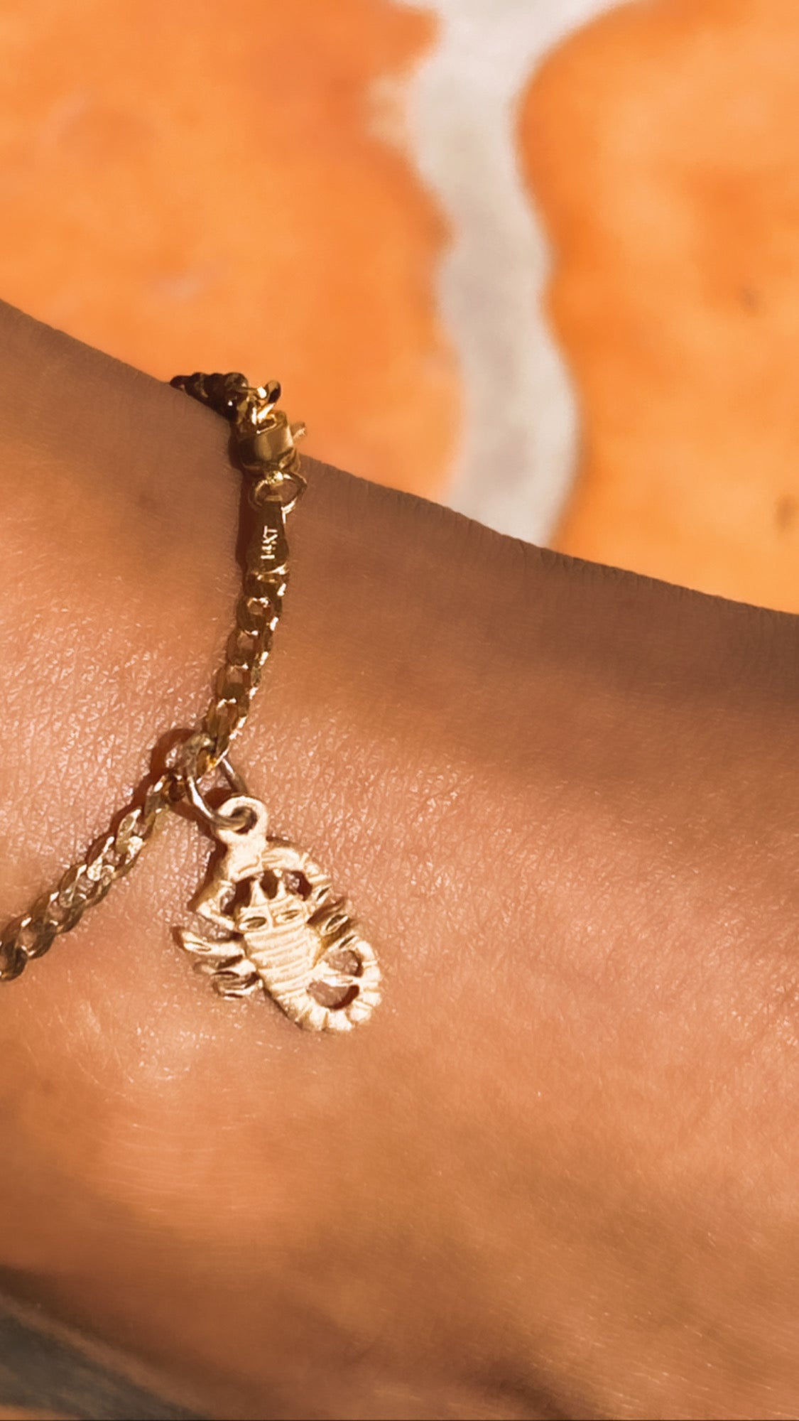 Zodiac Sign Anklet