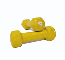 Load image into Gallery viewer, Morgan Vinyl Dumbbells Pair