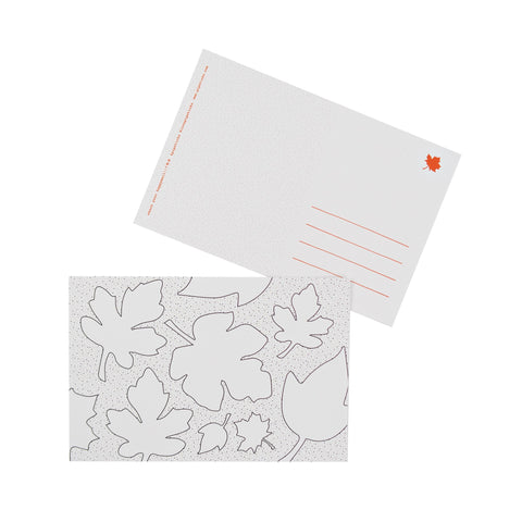 Color-in Autumn Leaves Postcard 20 Pack