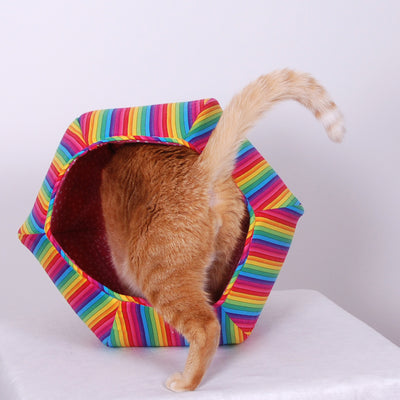 That Day We Were Getting Silly and Having Fun - Nyan Cat Ball
