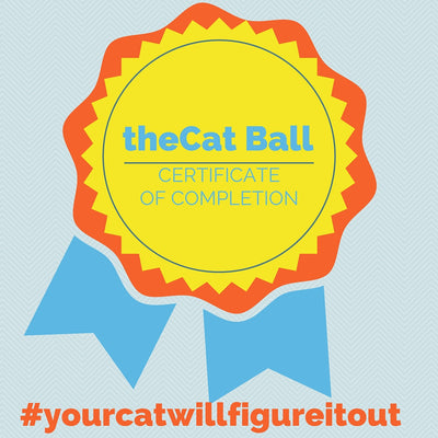 The Cat Ball Certificate and Gold Star