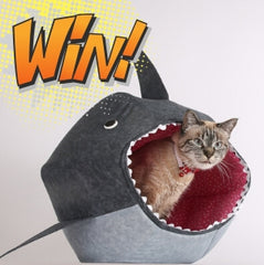 Do you love our silly shark Cat Ball® cat bed?...