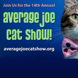 Average Joe Cat Show 2017