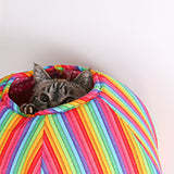 Cat Ball cat bed for the Nyan Cat