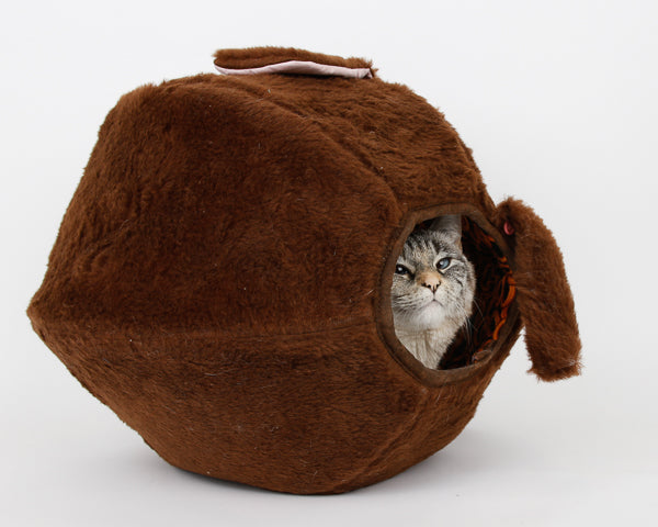 A cat peeking out of the novelty dog Cat Ball cat bed
