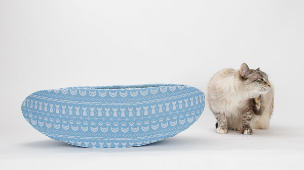 Our cat model Tink stops next to the blue cat knit fabric Cat Canoe because her ear itches