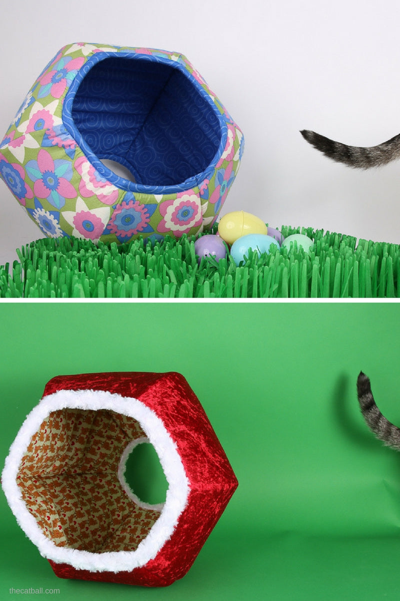 Cat photo shoot bloopers at the Cat Ball World Headquarters