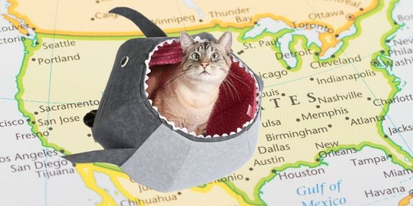 Retail locations for the Cat Canoe and Cat Ball cat bed