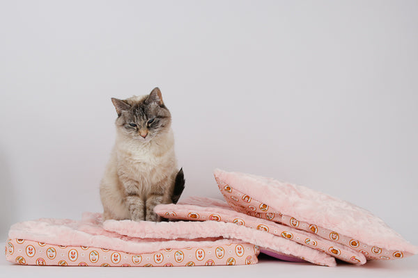 A small lynx point cat sits on a pile of prototype cat beds made in a luxury pink faux fur