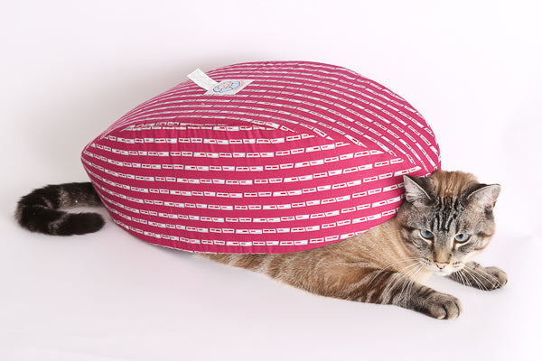 Retro, our half Siamese cat model, underneath a Cat Canoe® modern pet bed