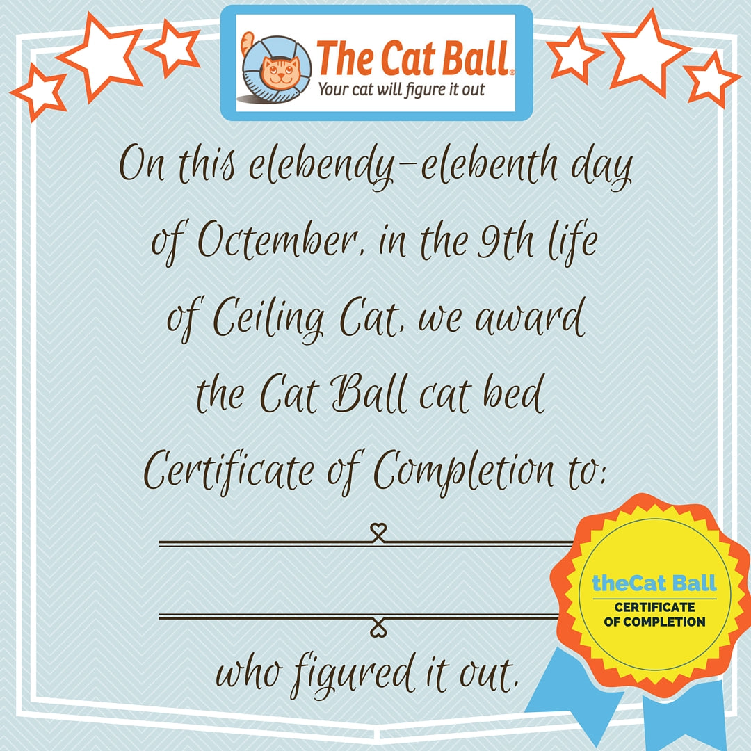 The Cat Ball certificate of completion and gold star