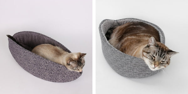 Compare cat sizes in the Cat Canoe