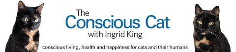 The Conscious Cat is a resource for conscious living, health and happiness for cats and people