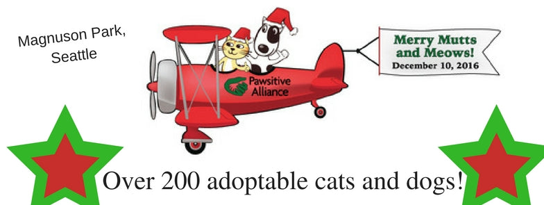 Pawsitive Alliance pet adoption event at Magnuson hangar in Seattle