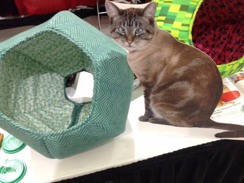 Flat Retro at Seattle Pet Expo 2015