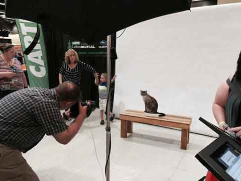 Flat Retro gets a pro photo taken at Seattle Pet Expo 2015