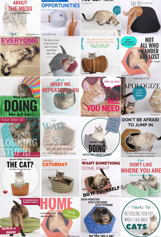 Inspirational cat posters made by The Cat Ball