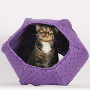 A tabby cat inside the Cat Ball cat bed