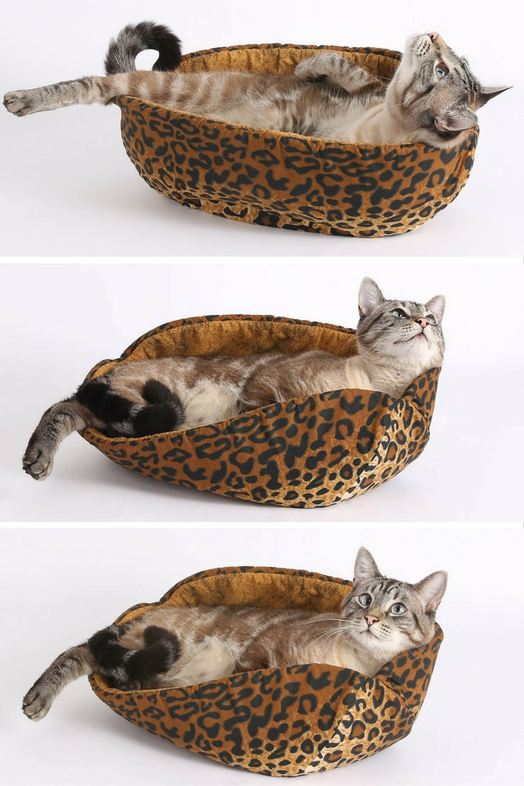 A Siamese cat lounges in the leopard Cat Canoe modern cat bed