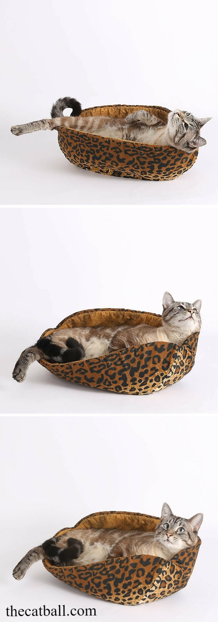 The Cat Canoe modern pet bed is made here in a cotton leopard print fabric. This cat bed was made in the USA.