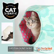 National Cat Day - The Cat Ball