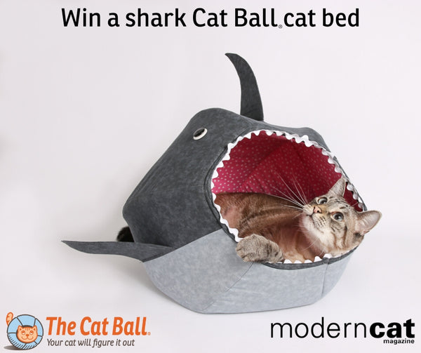 Win a shark Cat Ball cat bed from the Cat Ball, LLC and ModernCat magazine