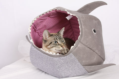 the shark CAT BALL cat bed is a funny photo prop
