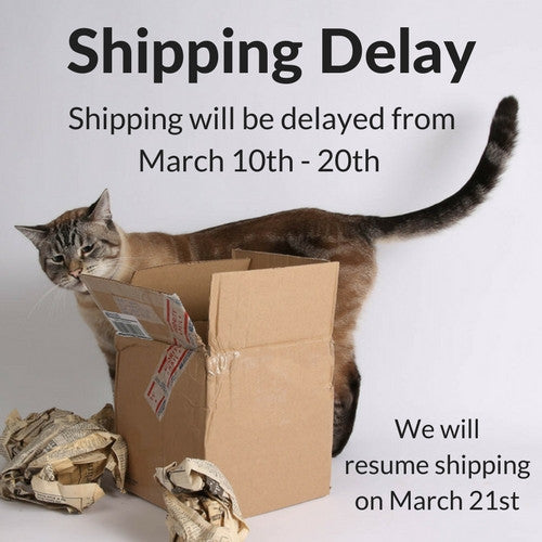 Shipping delay notice at the Cat Ball ecommerce page