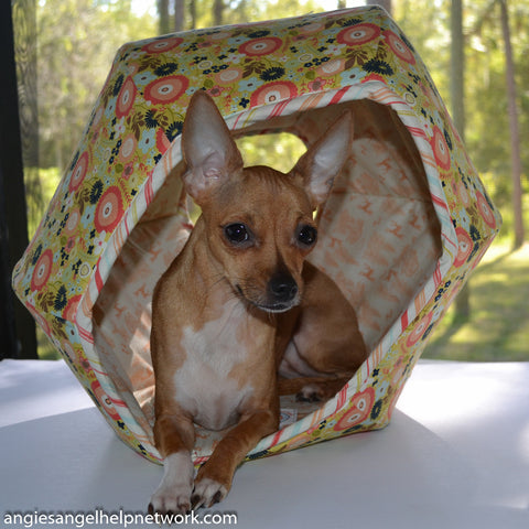 A small dog using the Cat Ball cat bed, photo by Angie's Andel Help Network