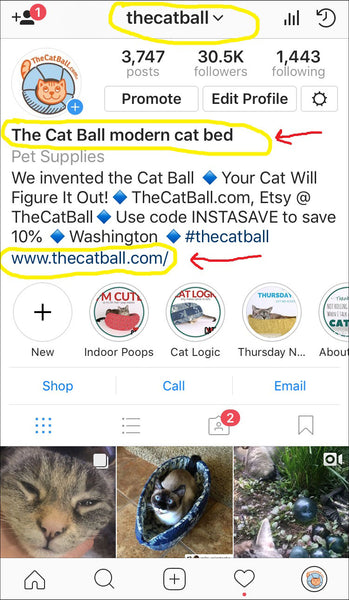 The Cat Ball Instagram profile page