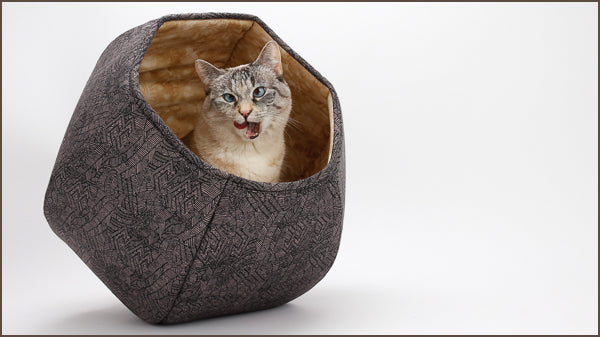 The Cat Ball is a modern bed for cats