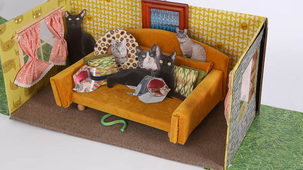 The Cat Ball made a diorama for photographing your flat cat at CatConLA in 2016