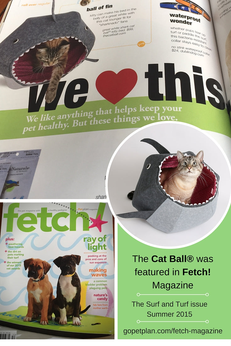 The Cat Ball cat bed in Fetch magazine by PetPlan