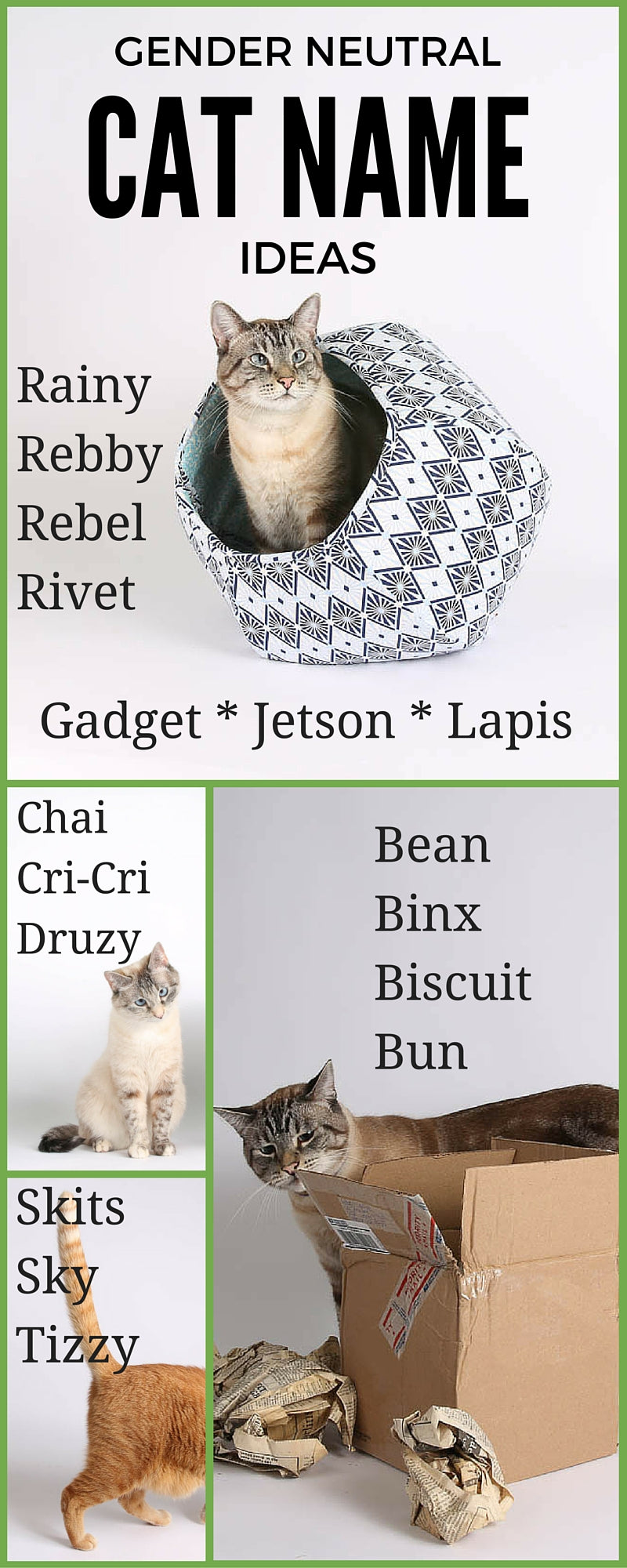 Ideas for gender neutral cat names