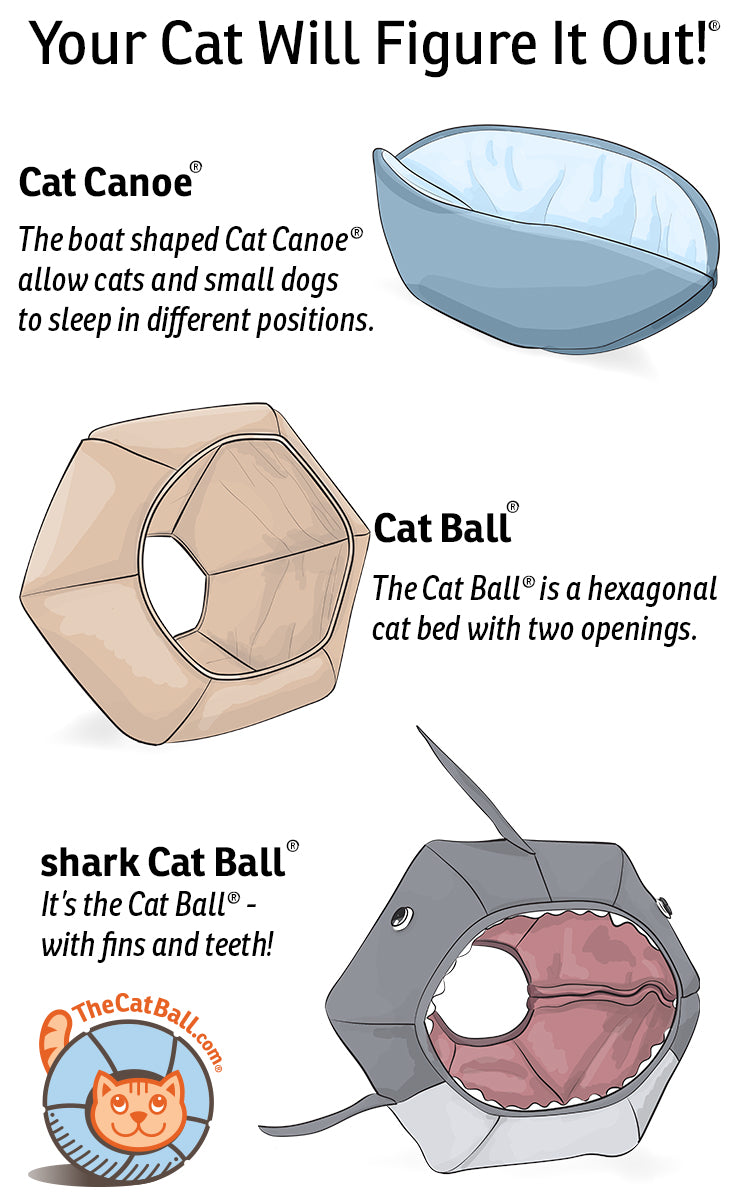 What modern cat bed design does your cat want?