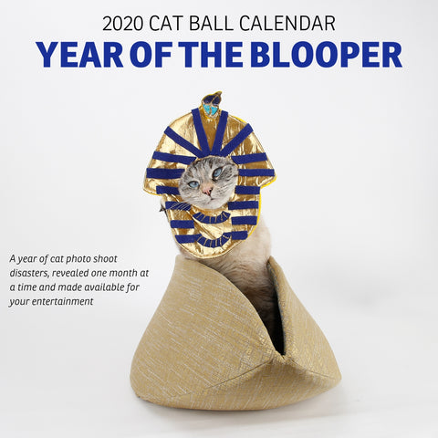 Cover of the 2020 Cat Ball blooper photo calendar, featuring Tink wearing a King Tut burial mask costume