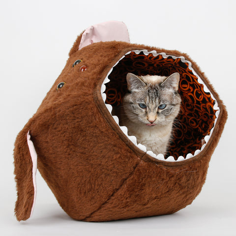 A small cat inside the hairy dog Cat Ball® cat bed