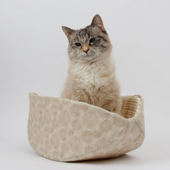 Cat Canoe® modern pet bed in neutral wood  and bamboo print fabrics