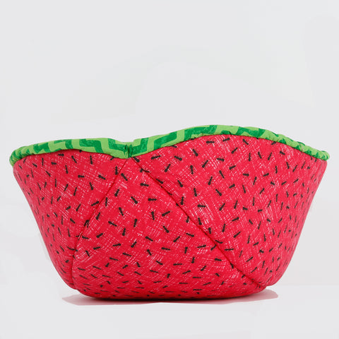 Cat Canoe® made in green zig zag  fabric, to look like a watermelon.  The bed is turned inside out in this photo so you can see the funny ant lining.