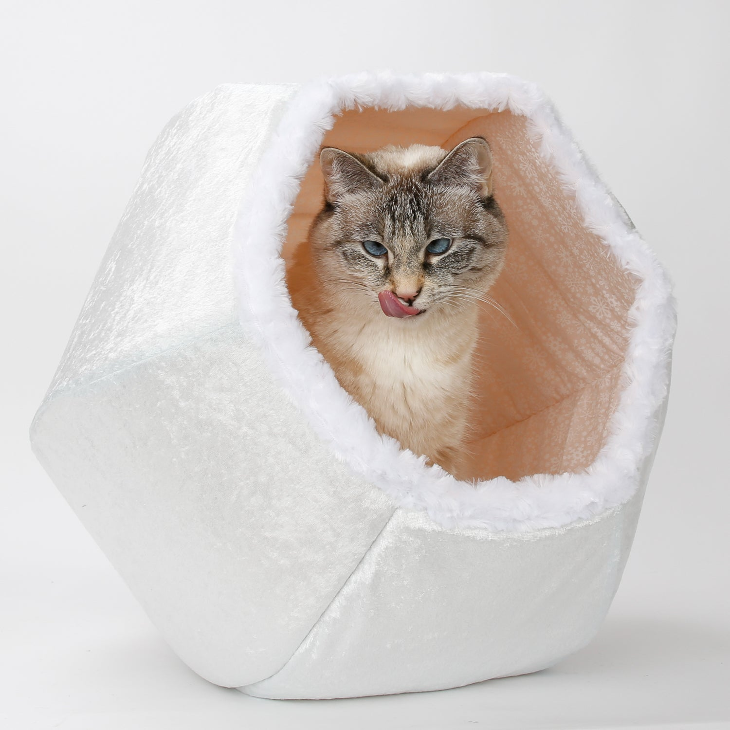 Snowball all white cat ball kitty bed the cat ball - Bed made of balls ...