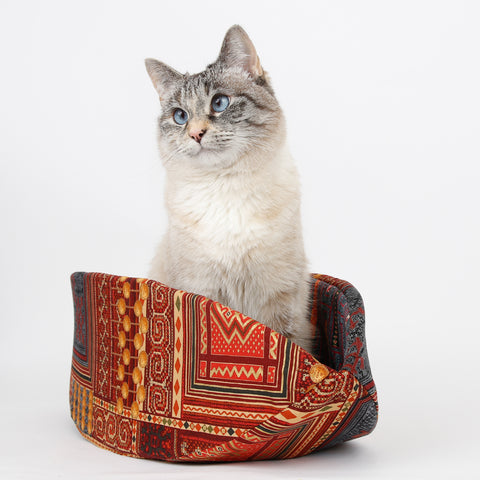 Cat Canoe in red and gold kilim print