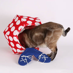 Retro explores the clown Cat Ball cat bed. The clown is a special edition Cat Ball®